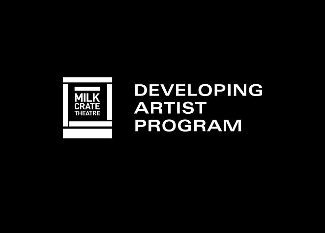 Developing artist program.jpg