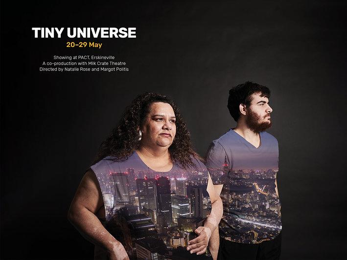 Tiny Universe Home Page.jpg