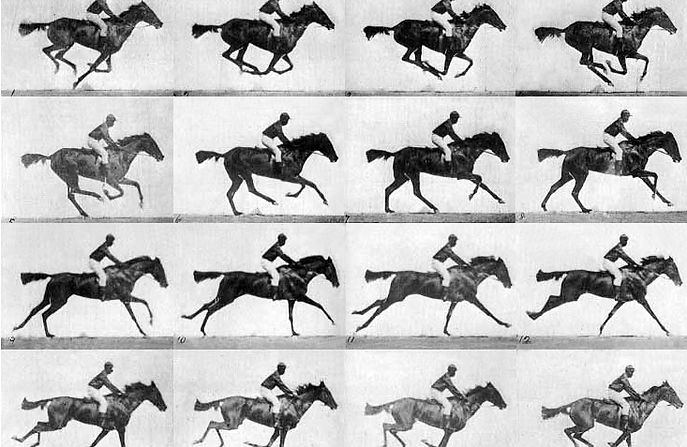 Eadweard Muybridge, The Horse in Motion, 1878, Photography (Public Domain image from The Library of Congress Prints and Photographs Division).