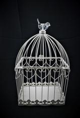 Glass Birdie Cage