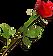 Rose 2.png