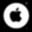 option_apple.png