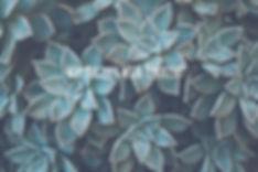 Texture_edited.jpg