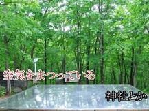 SS_photo_03.jpg