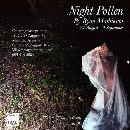 Night-Pollen-800px.jpg