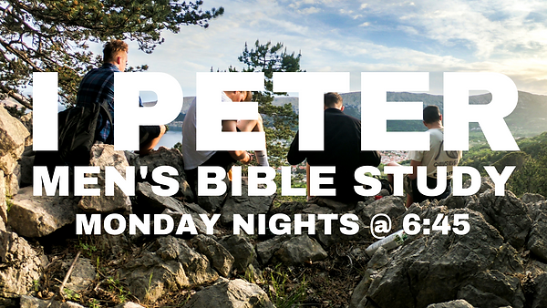 MEN'S BIBLE STUDY (1).png