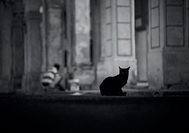 0015 Paus-Habana 18-04-02.jpg