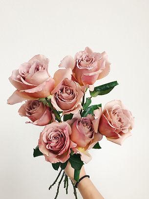 Cafe Latte Garden Roses