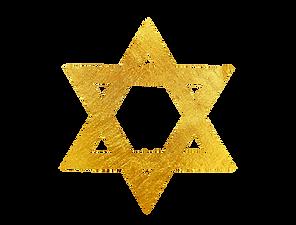 merkaba logo png.png
