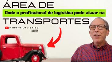 A atuação do profissional de LOGÍSTICA na área de TRANSPORTES