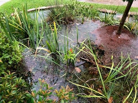 WaterWise_7.jpg