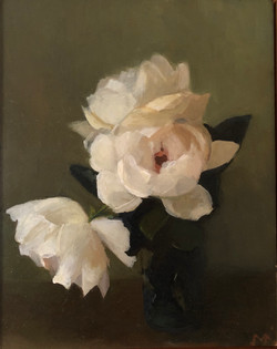 Newport roses