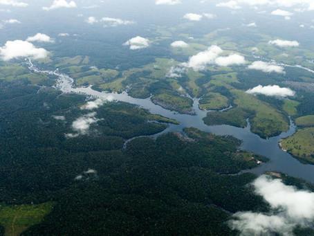 O caminho para o desmatamento zero