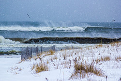 blizzard juno ~ westhampton beach