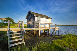 orient shack