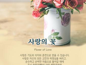 [1분묵상] 사랑의 꽃