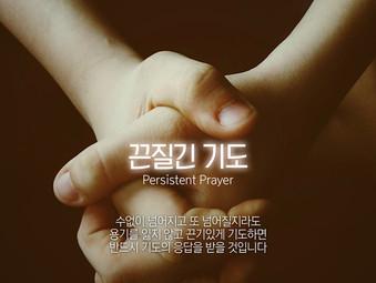 [1분묵상] 끈질긴 기도