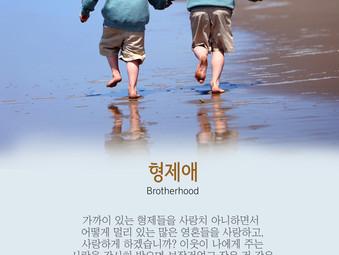 [1분묵상] 형제애