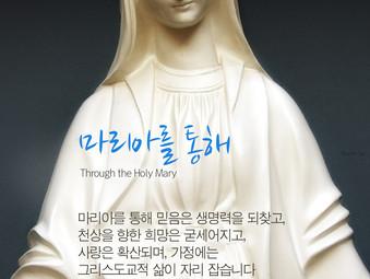 [1분묵상] 마리아를 통해