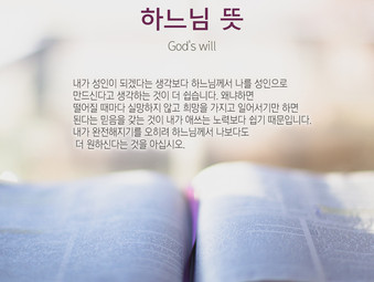 [1분묵상] 하느님 뜻