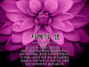 [1분묵상] 지혜의 샘