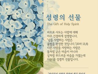 [1분묵상] 성령의 선물