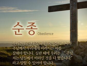 1분 묵상 / 순종(Obedience)