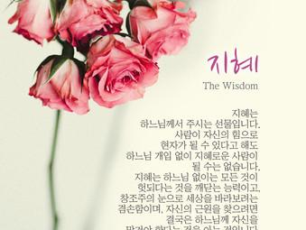 [1분묵상] 지혜