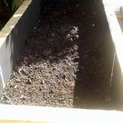 veggie garden box.jpg