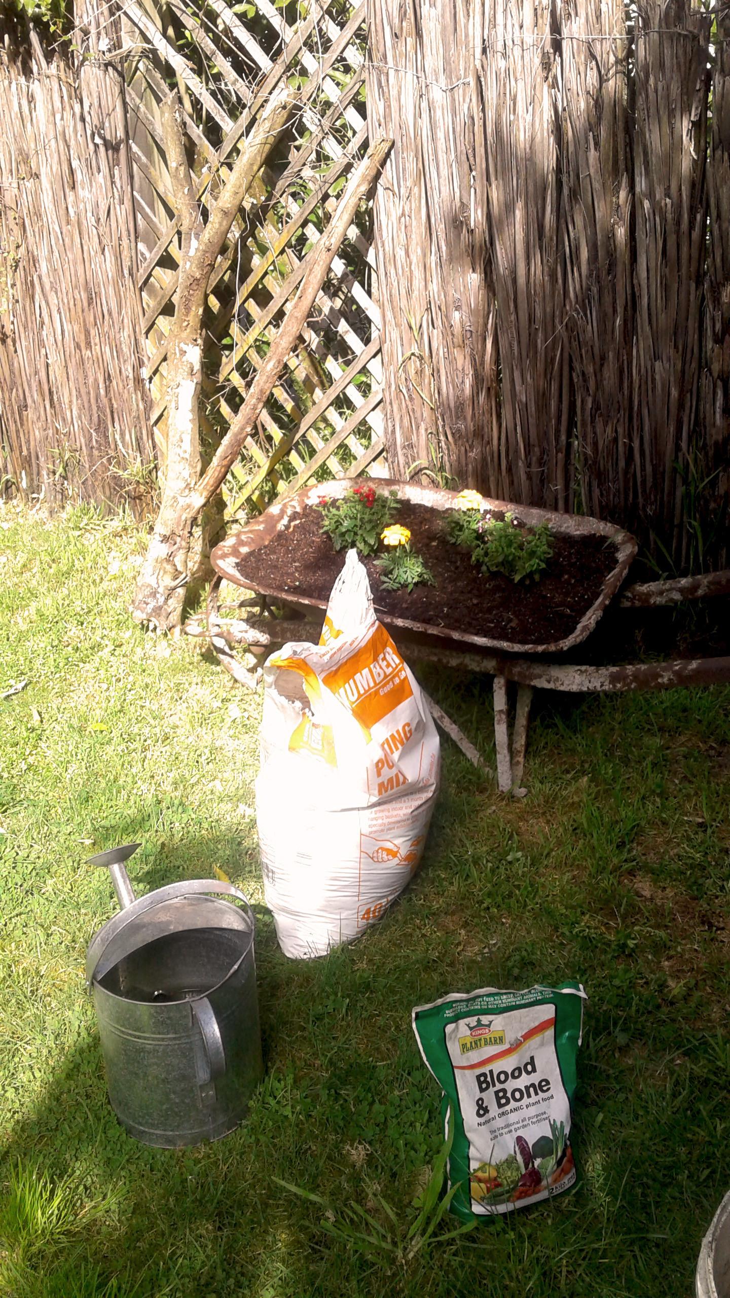 spring clean garden.jpg