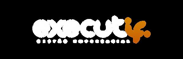 Logo Executif Variaá‰es-02.png