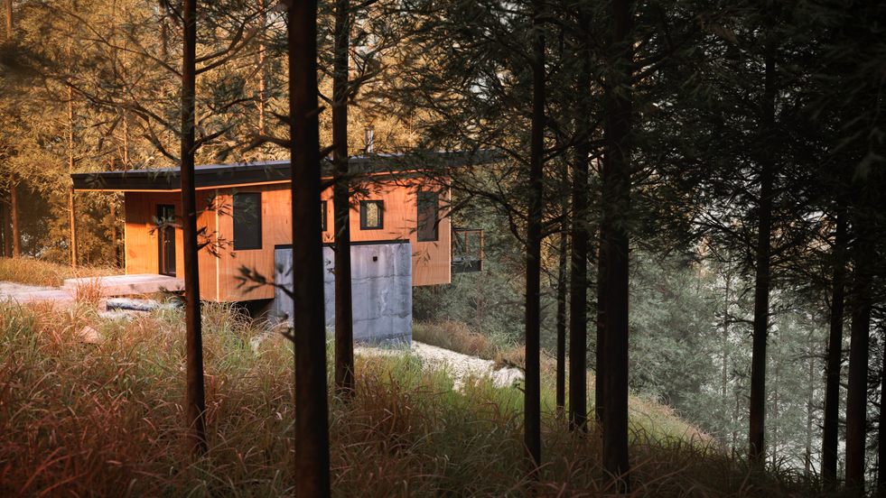 Pine forest house