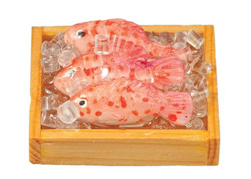 3 Fish on Ice $30
