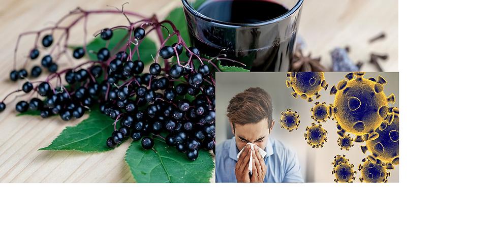 Jarabes Medicinales para Fortalecer el Sistema Inmune