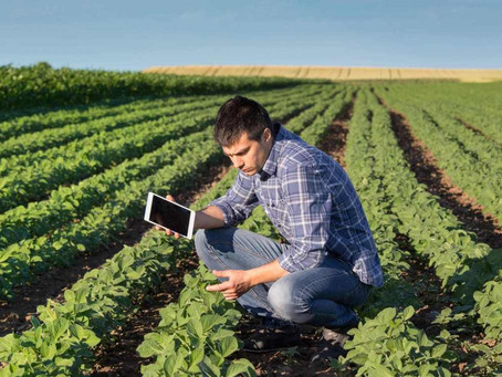 The 4 Parts to a Data-Driven Farm