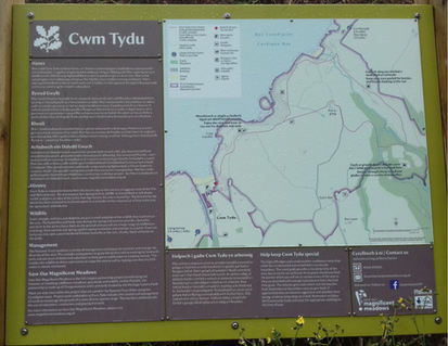 The National Trust information board at Cwmtydu