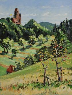 Pfalz Berwartstein 2013