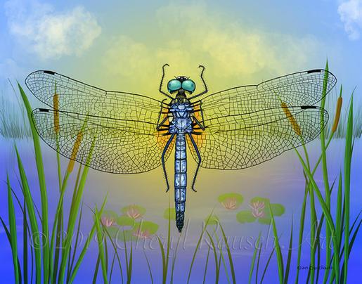 Blue Dasher Dragonfly