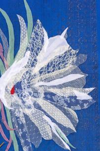 Detail of Purest Lily (Cereus)