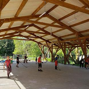 Pavilion-hockey.jpg