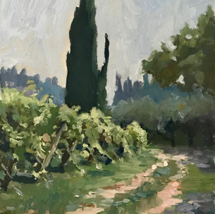 Italy Plein Air Landscapes