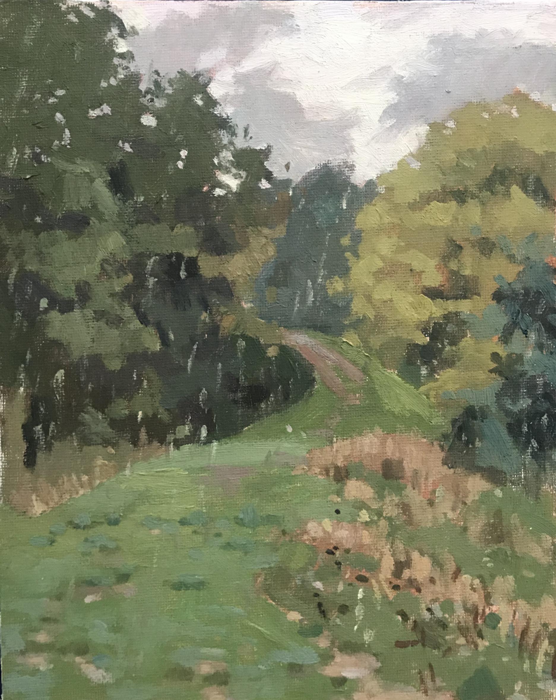 Hampstead Heath Rainy day