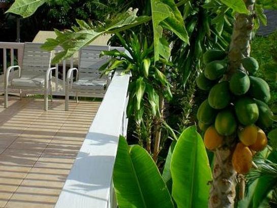 Lanai Ocean View Suite Terrace