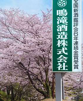 Narutaki (3).jpg