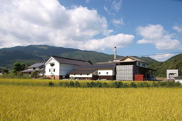 MorikawaShuzo1.JPG