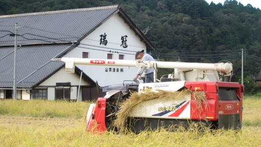 Yamaoka b 11.JPG