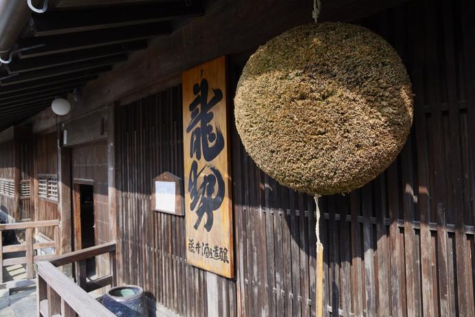 Fujii b 08.jpg