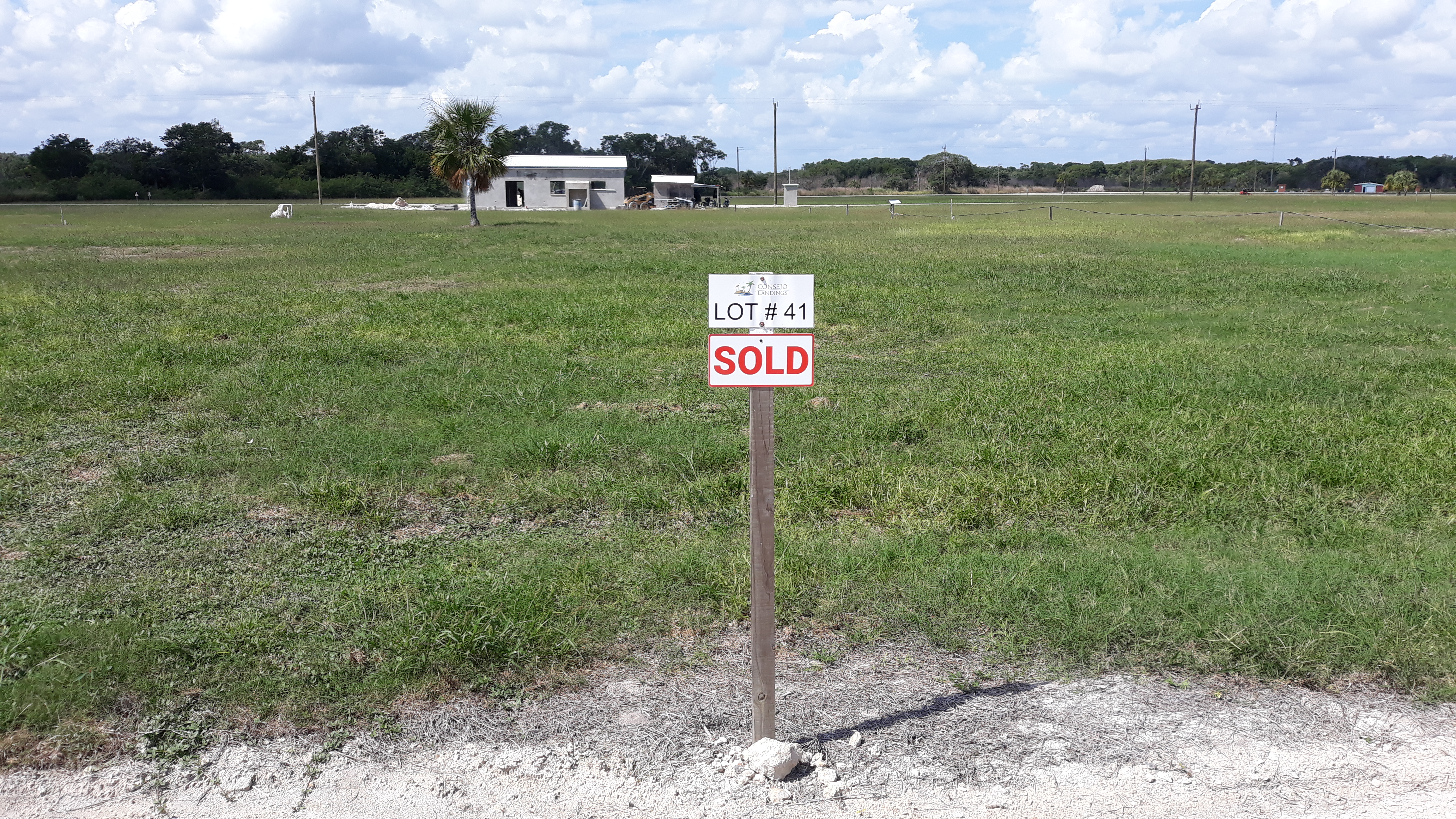 Sold - Lot#41