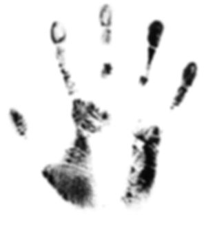 hand-1445014.jpg