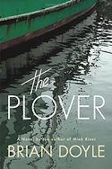 the plover.jpg